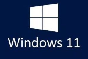 Windows 11 PRO 64 bit ISO Download