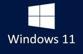 Windows 11 PRO 64 bit ISO Download - Soft Famous